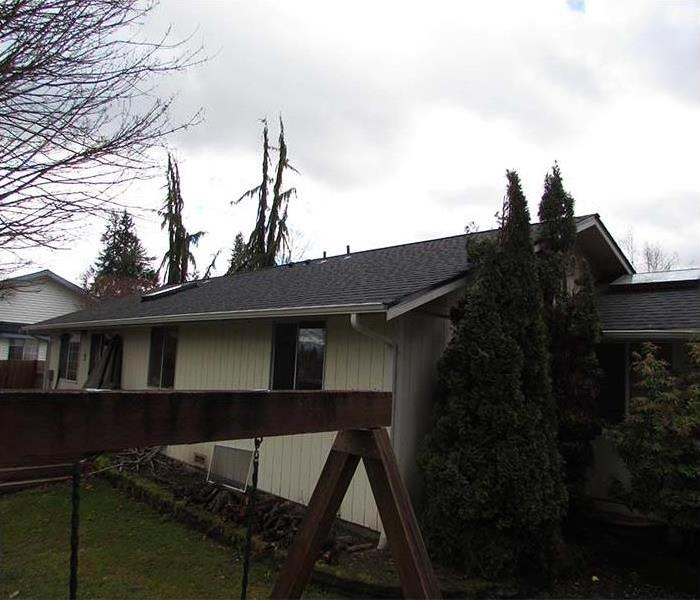Tree Falls on Lake Stevens Home After