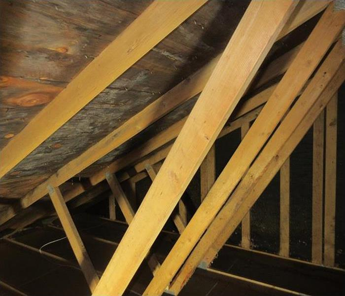 Mold in the Attic of this Lake Stevens Home